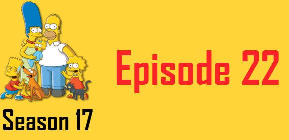 The Simpsons Season 17 Episode 22 TV Series