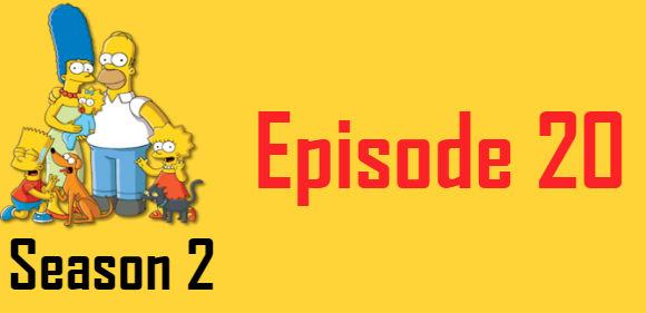 The Simpsons Season 2 Episode 20 TV Series