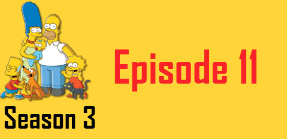 The Simpsons Season 3 Episode 11 TV Series