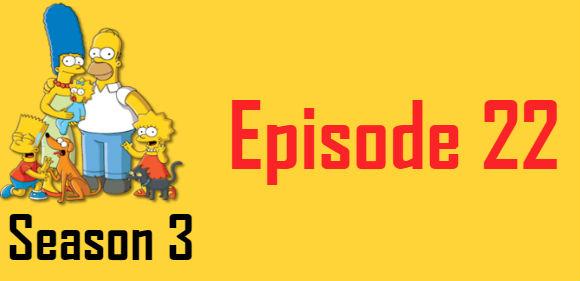 The Simpsons Season 3 Episode 22 TV Series