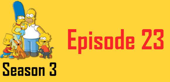 The Simpsons Season 3 Episode 23 TV Series