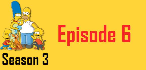 The Simpsons Season 3 Episode 6 TV Series