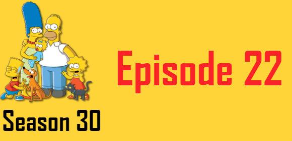 The Simpsons Season 30 Episode 22 TV Series