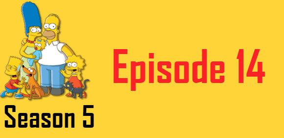 The Simpsons Season 5 Episode 14 TV Series