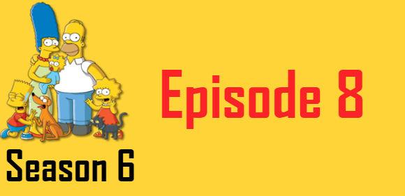 The Simpsons Season 6 Episode 8 TV Series